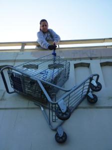 ccud-shop cart