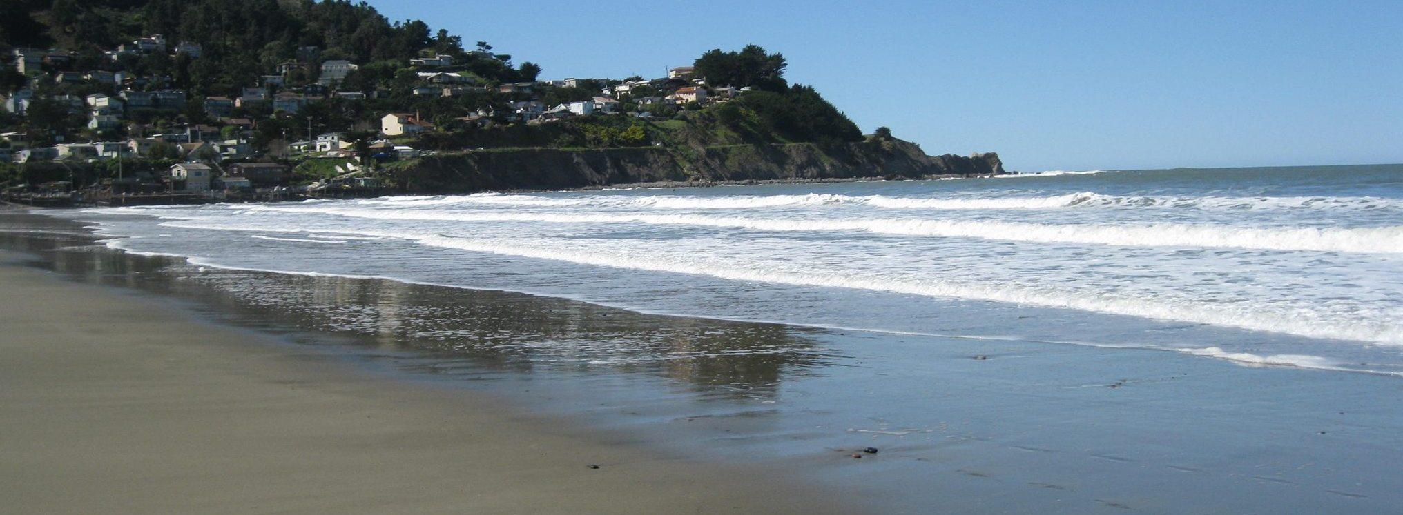 Adopt Your Beach
