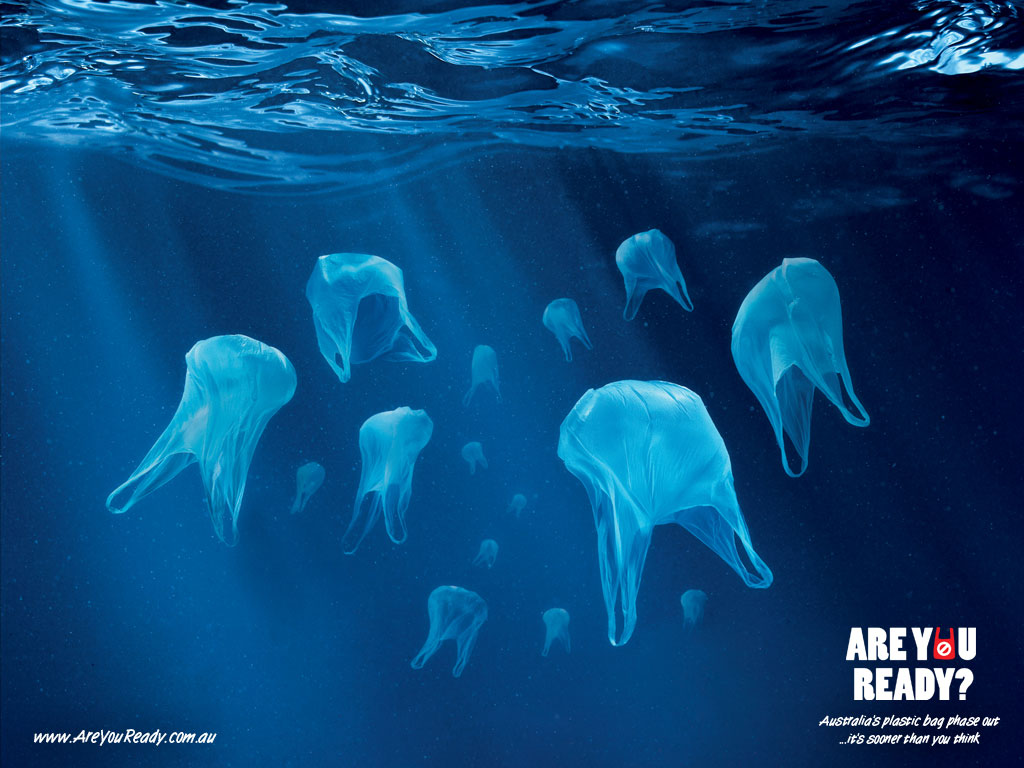 Plastic Bags In Our Environment