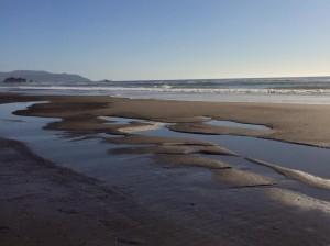 mussel rock low tide