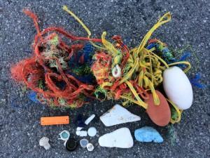 mussel rock trash