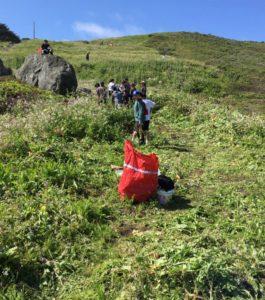 habitat restoration rockaway 3