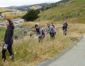 team indeed habitat restoration